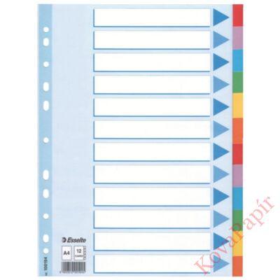 Regiszter ESSELTE Standard A/4 karton 12 részes